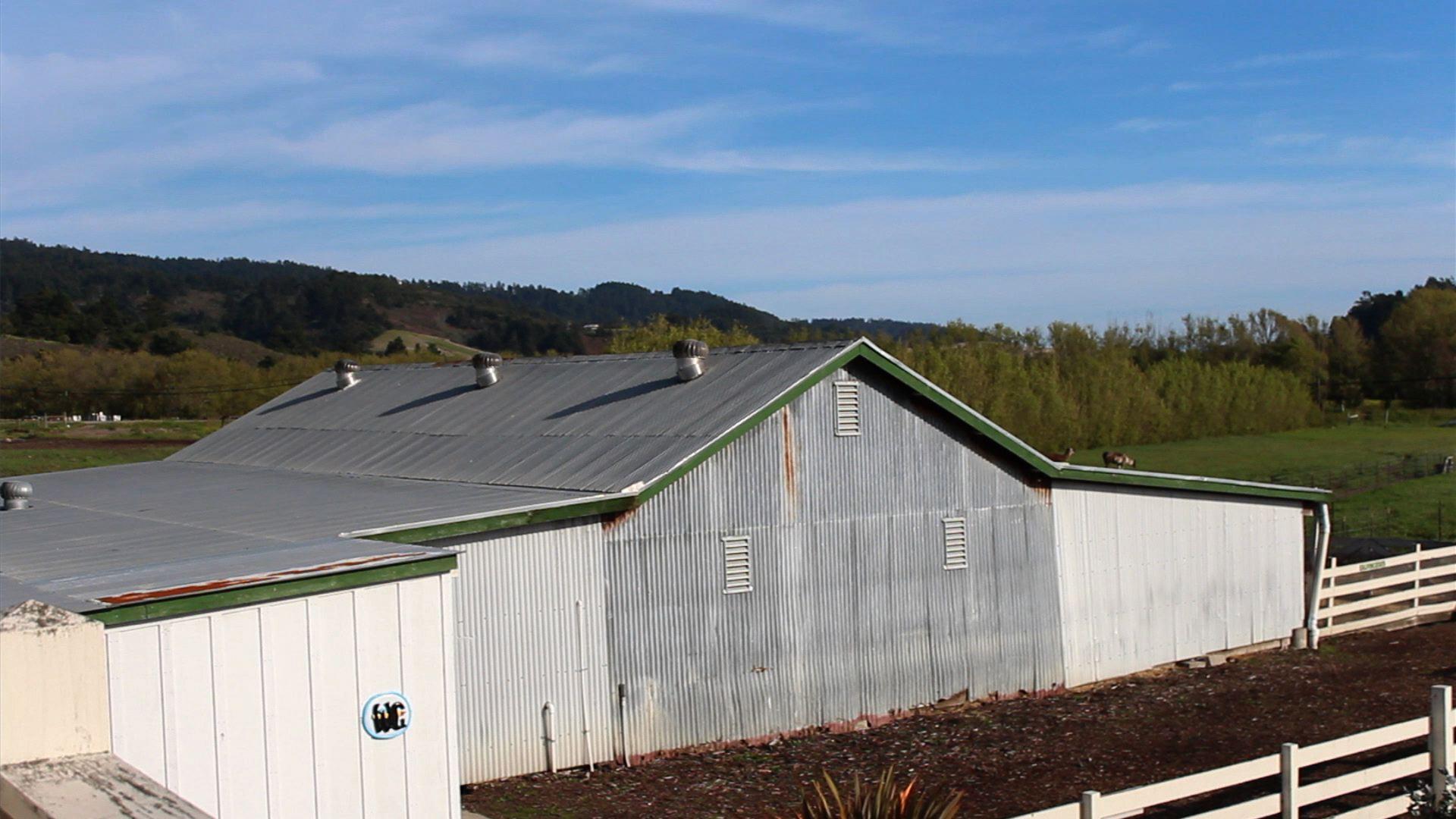 Gutter Dairy Barn Hydraulische Laufstall Entmistungsanlage
